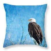 Bald Eagle Blues Throw Pillow
