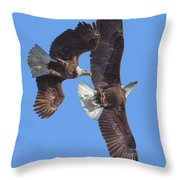 Bald Eagle Chase Over Pohick Bay Drb148 Throw Pillow