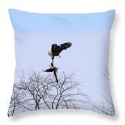 Bald Eagle Courtship Ritual  1338 Throw Pillow