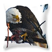 Bald Eagle Eating It's Prey Throw Pillow