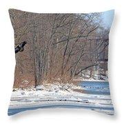 Bald Eagle Fledgling Near Ludwig Mill 2576 Throw Pillow