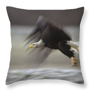 Bald Eagle Flying Alaska Throw Pillow