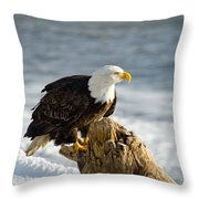 Bald Eagle Homer Spit Alaska Throw Pillow