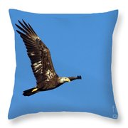 Bald Eagle In Flight Throw Pillow