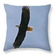 Bald Eagle In Sandspit Bc Throw Pillow