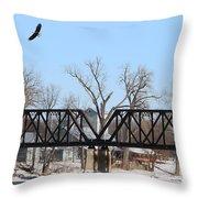 Bald Eagle Near Ludwig Mill Throw Pillow