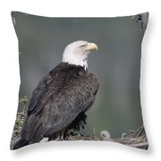 Bald Eagle On Nest With Chick Alaska Throw Pillow by Michael Quinton