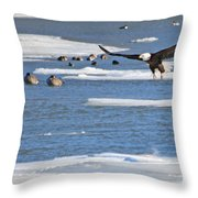 Bald Eagle Over Maumee River 2456 Throw Pillow