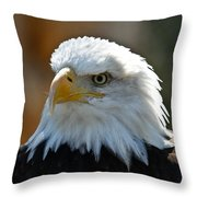 Bald Eagle Pose Throw Pillow