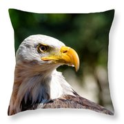 Bald Eagle Profile Throw Pillow
