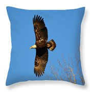 Bald Eagle Soaring Over Trees Throw Pillow