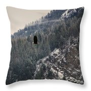 Bald Eagle V I Throw Pillow