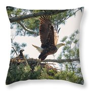 Bald Eagle With Eaglet Throw Pillow