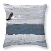 Bald Eagle With Fish 3655 Throw Pillow