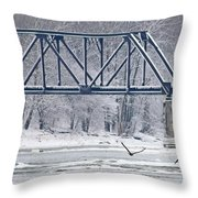 Bald Eagle With Fish By Railroad Bridge 6639 Throw Pillow