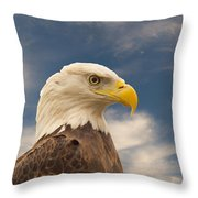 Bald Eagle With Piercing Eyes 1 Throw Pillow