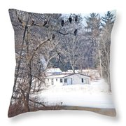 Bald Eagles In Tree In Grand Rapids Ohio 3996 Throw Pillow