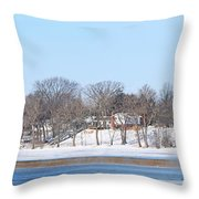 Bald Eagles In Tree In Grand Rapids Ohio Panorama Throw Pillow