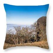 Bald Hills Vista Panorama Throw Pillow