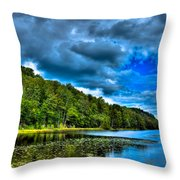 Bald Mountain Pond In Summer Throw Pillow