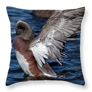 Bald Pate Throw Pillow by Skip Willits