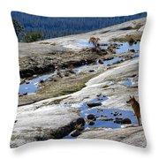Bald Rock Lookout Throw Pillow