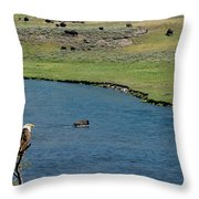Baldy And Bull Throw Pillow
