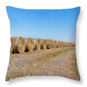 Bales Of Hay On An Old Farm Road Throw Pillow