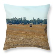 Bales Of Hay Throw Pillow