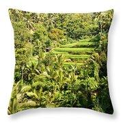 Bali Sayan Rice Terraces Throw Pillow