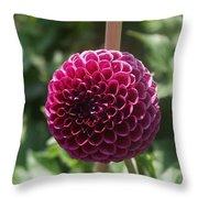 Ball Flower Throw Pillow