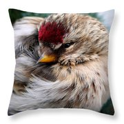 Ball Of Feathers Throw Pillow by Christina Rollo