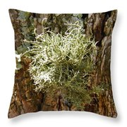 Ball Of Moss Throw Pillow