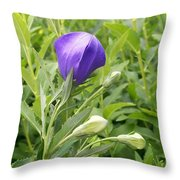 Balloon Flower Ready To Launch Throw Pillow