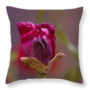 Ballroom Dancing Throw Pillow