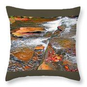 Balsam River Rocks And Leaves Throw Pillow