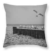Baltic Sea-gulls Throw Pillow