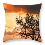 Baltic Sunset In The South Of Sweden Throw Pillow