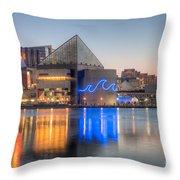 Baltimore National Aquarium At Dawn IIi Throw Pillow