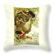 Baltimore Orioles Throw Pillow by Philip Ralley