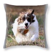 Bama - Pets - Dogs Throw Pillow