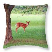 Bambi Days Throw Pillow
