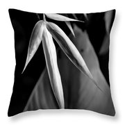 Bamboo And Banana Leaves Black And White Throw Pillow