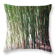 Bamboo By Roadsides Cherry Hill Roadside Greens            Throw Pillow