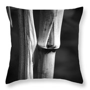 Bamboo Cane  Throw Pillow