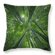 Bamboo Forest 1 Throw Pillow