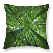 Bamboo Forest 2 Throw Pillow