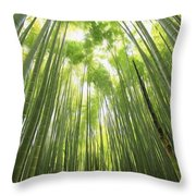 Bamboo Forest 5 Throw Pillow