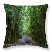Bamboo Forest Trail Hana Maui Throw Pillow by Dustin K Ryan