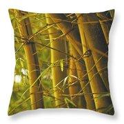 Bamboo Gold Throw Pillow